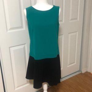 Loft Dress size 12P